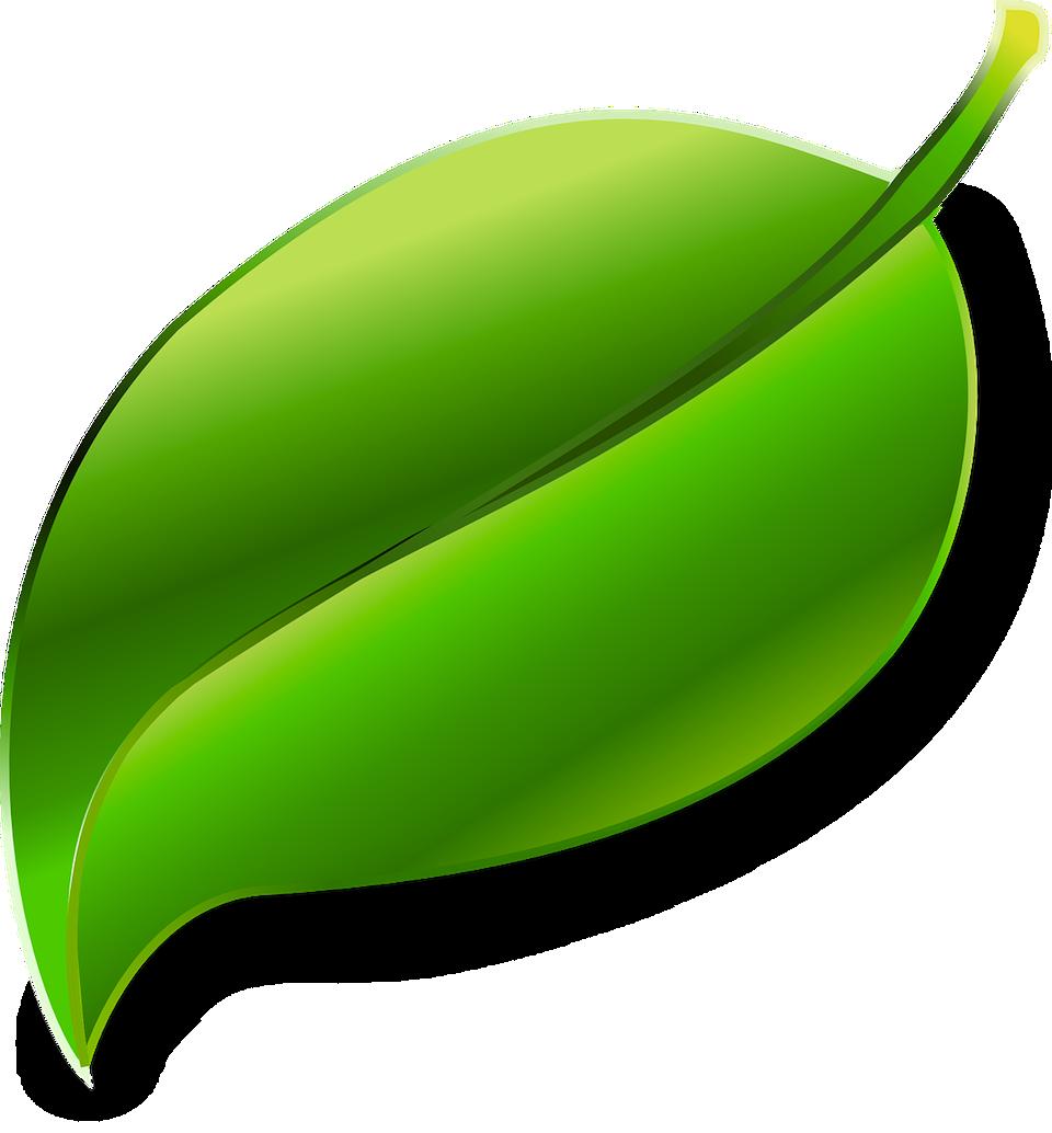 Energieeffizient Sanieren Bosch Und Das Effizienzhaus