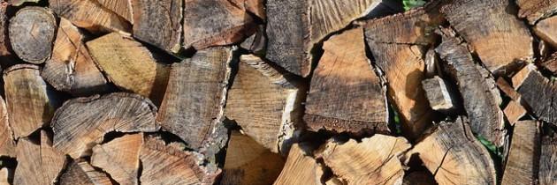 Holzspalter – weil der Winter schon wartet